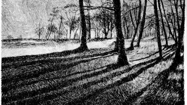 les-ombres-640x360